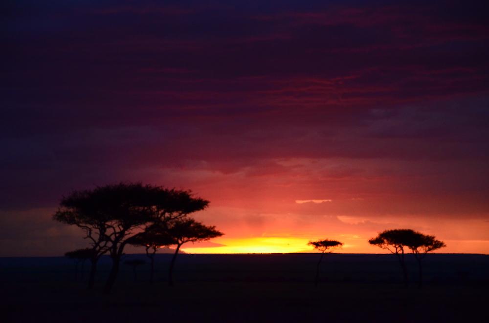 Savannah at sunset with skies of orange to deep purple